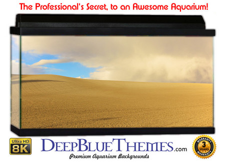 Buy Aquarium Background Desert Field Aquarium Background