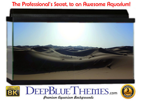 Buy Aquarium Background Desert Gray Aquarium Background