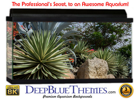 Buy Aquarium Background Desert Greens Aquarium Background