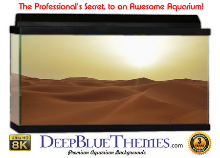 Buy Aquarium Background Desert Hills Aquarium Background
