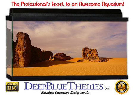 Buy Aquarium Background Desert Outcrop Aquarium Background