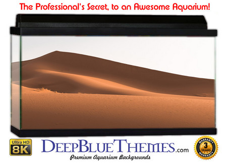 Buy Aquarium Background Desert Point Aquarium Background
