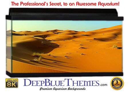 Buy Aquarium Background Desert Quilt Aquarium Background