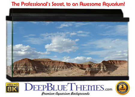 Buy Aquarium Background Desert Ridge Aquarium Background