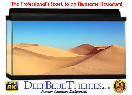 Buy Aquarium Background Desert Sands Aquarium Background