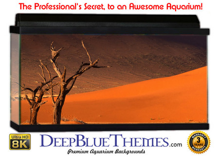 Buy Aquarium Background Desert Twins Aquarium Background