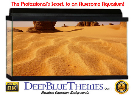 Buy Aquarium Background Desert Waves Aquarium Background