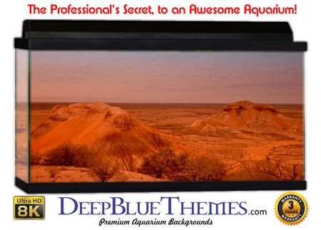 Buy Aquarium Background Desert Wind Aquarium Background