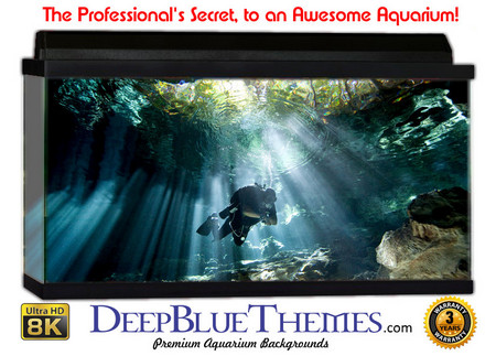 Buy Aquarium Background Divers Cave Aquarium Background