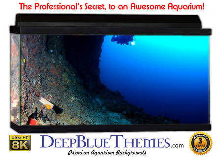 Buy Aquarium Background Divers Cross Aquarium Background