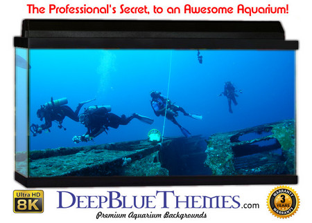 Buy Aquarium Background Divers Ship Aquarium Background