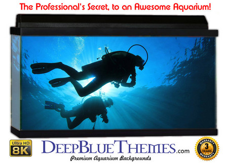 Buy Aquarium Background Divers Surface Aquarium Background