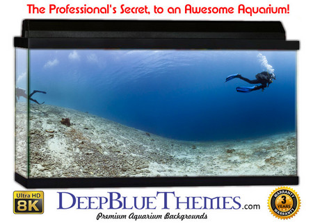 Buy Aquarium Background Divers Vast Aquarium Background