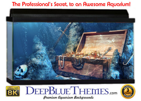 Buy Aquarium Background Favorite Treasure Aquarium Background