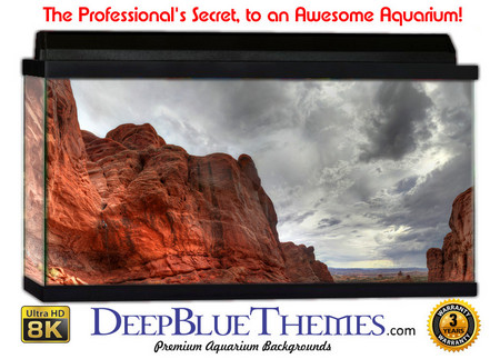 Rock Formations Aquarium Backgrounds Deepbluethemes Com