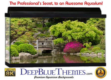 Buy Aquarium Background Garden Botanic Aquarium Background