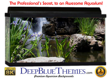Buy Aquarium Background Garden Falls Aquarium Background