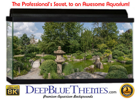 Buy Aquarium Background Garden Japan Aquarium Background