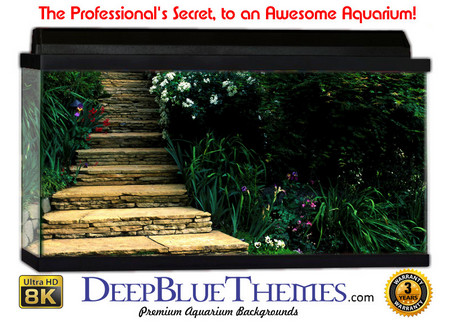 Buy Aquarium Background Garden Path Aquarium Background