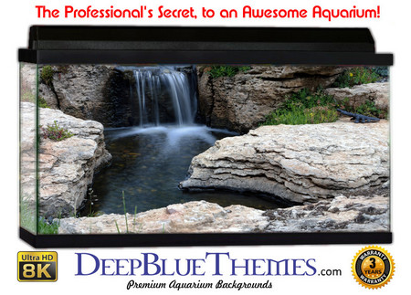 Buy Aquarium Background Garden Rock Aquarium Background