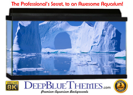 Buy Aquarium Background Ice Castle Aquarium Background