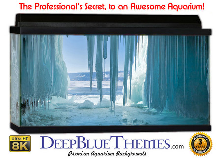 Buy Aquarium Background Ice Drip Aquarium Background