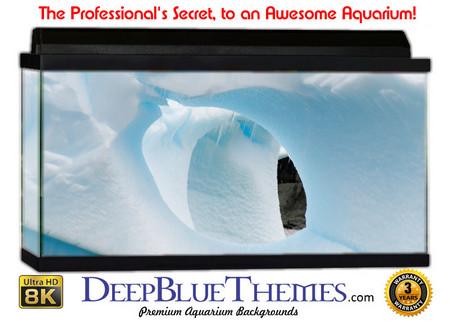 Buy Aquarium Background Ice Escape Aquarium Background