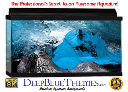 Buy Aquarium Background Ice Everywhere Aquarium Background