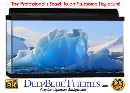Buy Aquarium Background Ice Flower Aquarium Background
