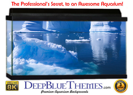 Buy Aquarium Background Ice Fortress Aquarium Background