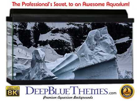 Buy Aquarium Background Ice Frozen Aquarium Background