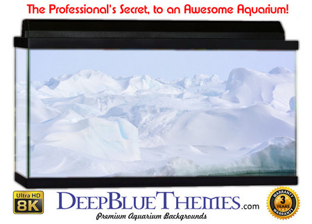 Buy Aquarium Background Ice Island Aquarium Background