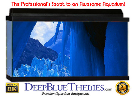 Buy Aquarium Background Ice Overhang Aquarium Background