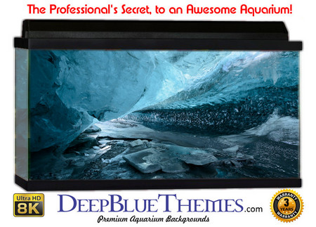 Buy Aquarium Background Ice Pathway Aquarium Background