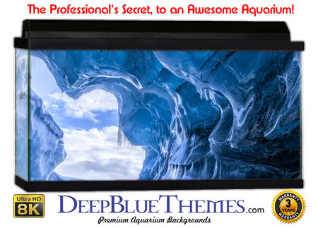 Buy Aquarium Background Ice Tunnel Aquarium Background