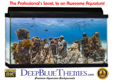 Buy Aquarium Background Reef Statues Aquarium Background