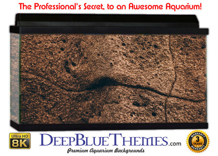 Buy Aquarium Background Rock Ancient Aquarium Background