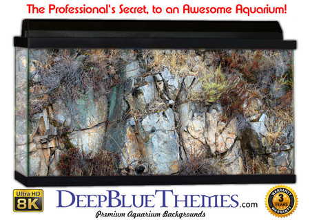 Buy Aquarium Background Rock Carve Aquarium Background