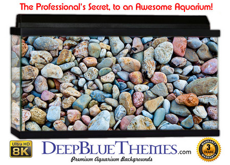 Buy Aquarium Background Rock Colors Aquarium Background