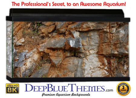 Buy Aquarium Background Rock Crisp Aquarium Background