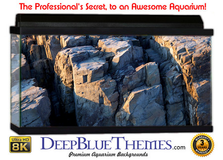 Buy Aquarium Background Rock Cube Aquarium Background