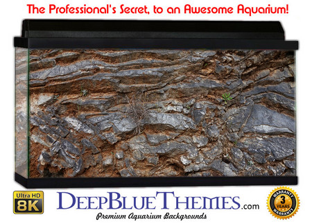 Buy Aquarium Background Rock Edge Aquarium Background