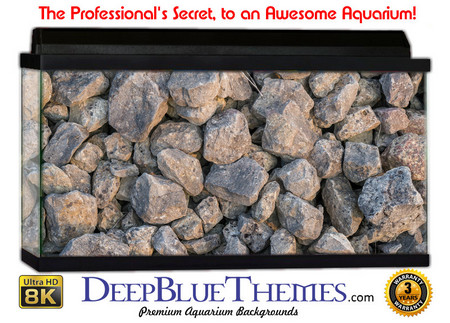 Buy Aquarium Background Rock Fragment Aquarium Background