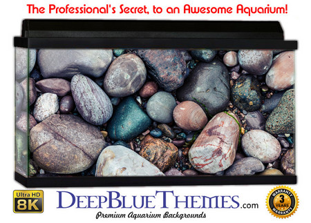 Buy Aquarium Background Rock Handful Aquarium Background