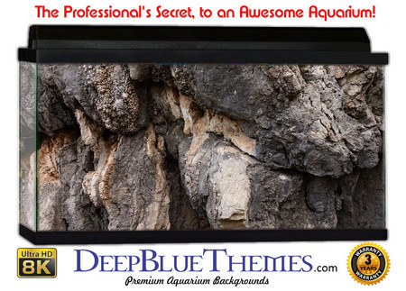 Buy Aquarium Background Rock Outcrop Aquarium Background