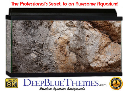 Buy Aquarium Background Rock Piece Aquarium Background