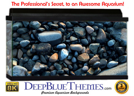 Buy Aquarium Background Rock Polished Aquarium Background