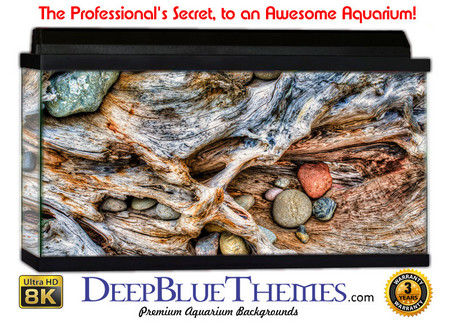 Buy Aquarium Background Rock Roots Aquarium Background