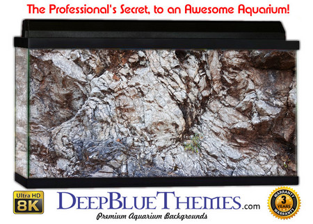 Buy Aquarium Background Rock Shine Aquarium Background