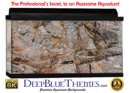 Buy Aquarium Background Rock Tall Aquarium Background